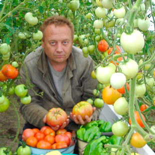 Игорь Лядов