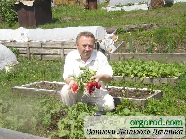 Удивительный огород Игоря Лядова