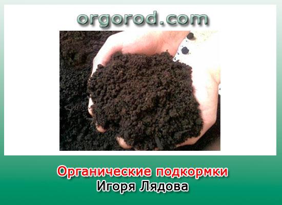 Органические подкормки Игоря Лядова