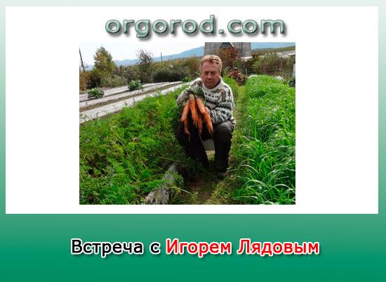 Встреча с Игорем Лядовым