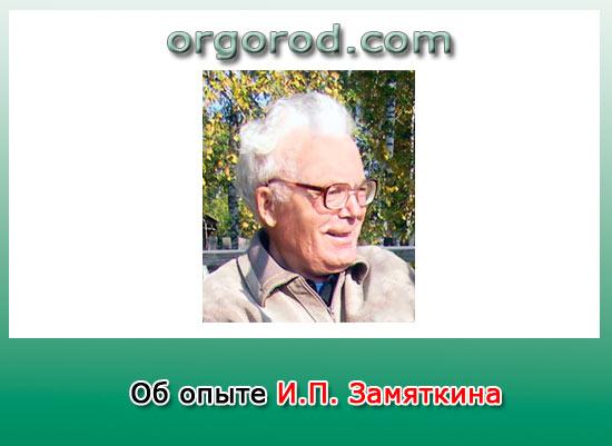 Об опыте И.П. Замяткина