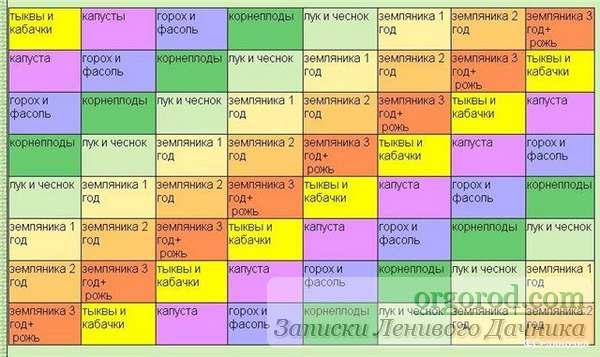 tablica-sochetanija-rastenij_02