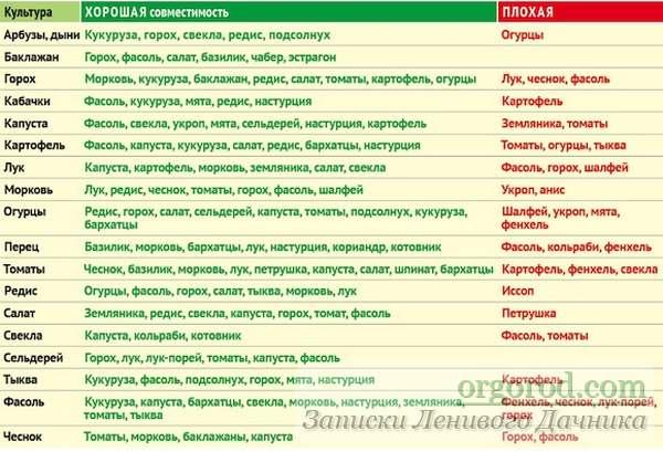 tablica-sochetanija-rastenij_03