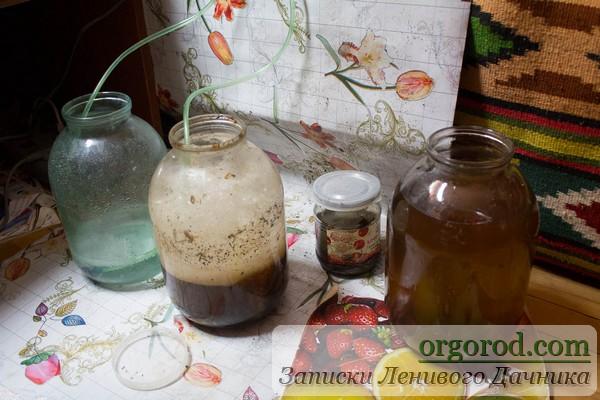 Растворы для полива: барботирования вода, АКЧ, компостный чай, биопрепараты