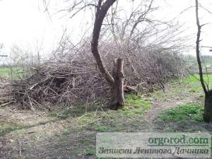 """""""Подарок"""" от строителей - новая куча дров"""