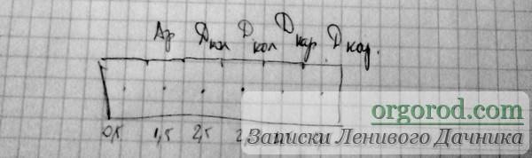 Схема посадки дыни и арбузов