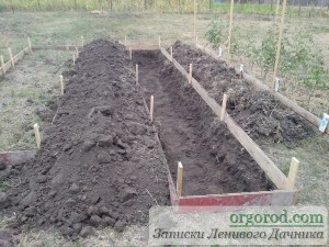 Снимаем глубокий слой земли при сооружении теплой грядки