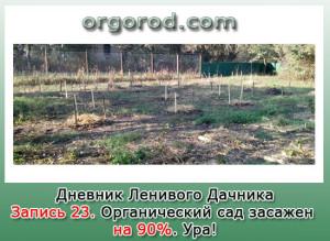 Заметка 23. Органический сад засажен на 90%. Ура!