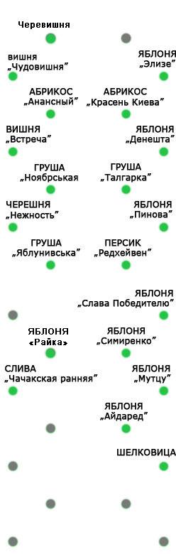 Схема сада