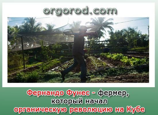 Фернандо Фунес - фермер, который начал органическую революцию на Кубе