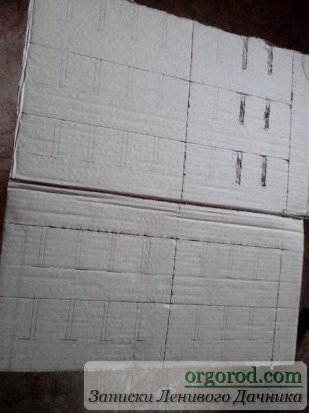 Раскрой картонного ящика для рассады