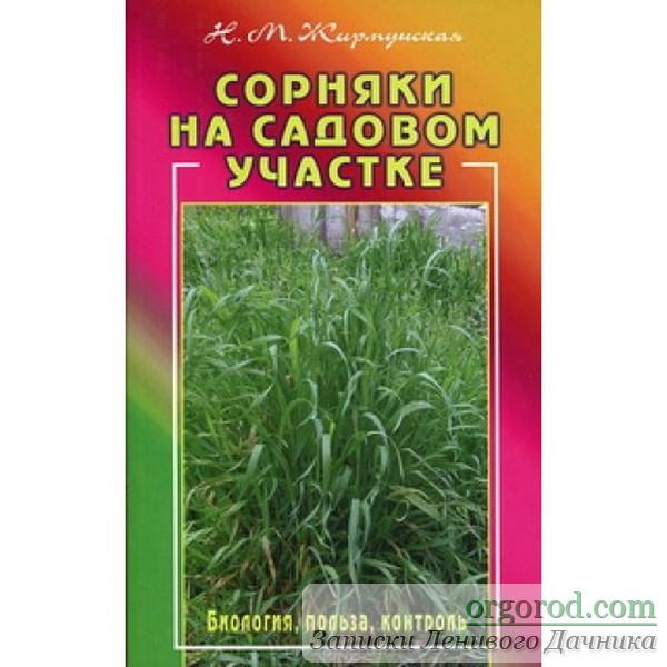 Жирмунская -Сорняки на садовом участке